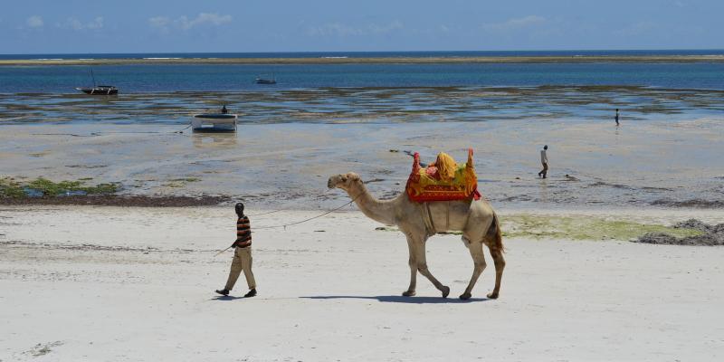 Keňa – Mombasa